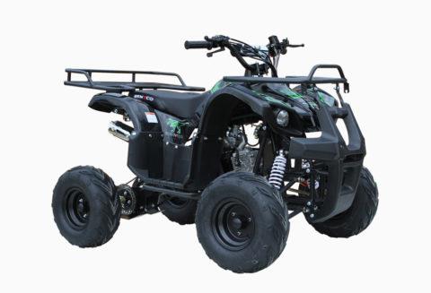 ATV 110 MINI