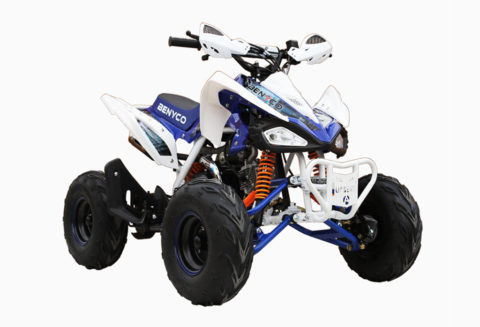 ATV 110 LIZARD