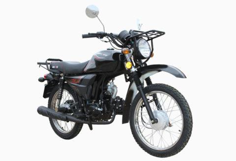 TRAPPER 50